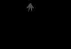 cropped-logo_lf.png