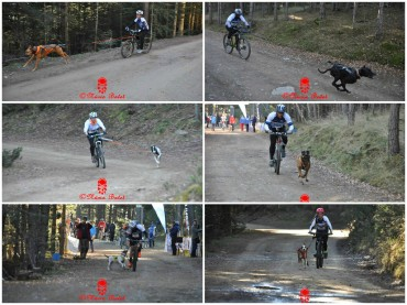 Bike_stjoanlerm
